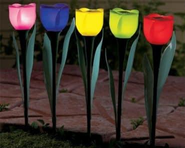 Lampes solaires - fleurs de différentes couleurs
